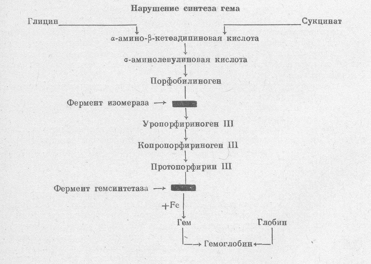 Порфиринурия